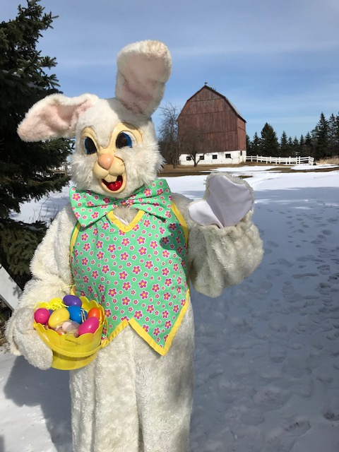 The easter Bunny is Coming to Gammondale